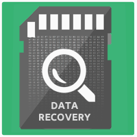 Data Recovery from SD / microSD
